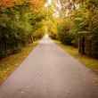 Country Road in Autumn — Stockfoto #34384137
