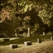 Old Cemetery — Stock Photo