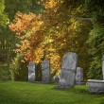 Old Cemetery — Stock Photo #35489285
