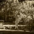 Old Cemetery — Stock Photo #35489373