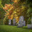 Old Cemetery — Stock Photo #35489285