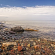 Lake Ontario Coastline — Stockfoto