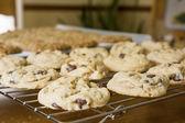 Fresh Baked Cookies — Stock Photo