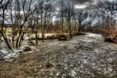 Winter Flood — Stock Photo