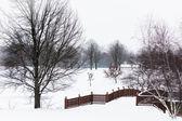 Snowy Winter Bridge — Stock Photo