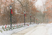 Old Style Street Lamps Christmas Painting — Stock Photo