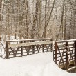 Winter Trail — Stock Photo #39010465