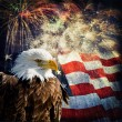 Bald Eagle & Fireworks — Stock Photo #39277329
