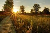 Prairie Sunset — Stock Photo