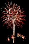 Fireworks Isolated — Stock Photo