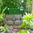 Wooden chair in the small garden - Stock Photo