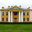 Old vitage Russian palace front view — Stock Photo