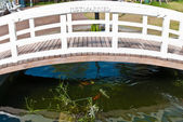 απλά έγγαμος ξύλινη γέφυρα λευκό — Φωτογραφία Αρχείου