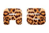 Texto inglés personalizado base en piel de leopardo — Foto de Stock