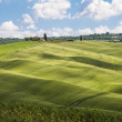 Green fields and blue sky,Tuscany,Italy — Stock Photo #25935237