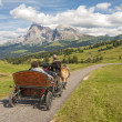 Seiser alm,south tyrol,Italy — Stock Photo