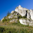 Royalty-Free Stock Photo: Isolated rock hill