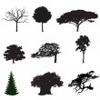 Silhouettes of trees - Stock Vector