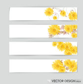Flower vector background brochure template. Set of floral cards — Stock Vector