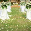 Wedding ceremony in beautiful garden — Foto Stock #18736505