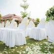 Wedding ceremony in a beautiful garden — Stock Photo #18736809
