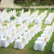 Wedding ceremony in a beautiful garden — Stock Photo #18736953