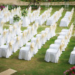 Wedding ceremony in a beautiful garden — Stock Photo #18737001