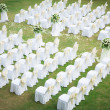 Wedding ceremony in a beautiful garden — Stock Photo #18737273