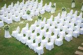 Bröllopsceremonin i en vacker trädgård — Stockfoto