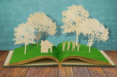 Paper cut of family symbol on old grass book ( House,Tree,Mom,Da — Stock Photo