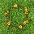 Beautiful yellow flower crown (Daisy) on fresh spring green gras — 图库照片