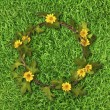 Beautiful yellow flower crown (Daisy) on fresh spring green gras — Stok fotoğraf
