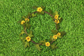 Beautiful yellow flower crown (Daisy) on fresh spring green gras — Stock Photo