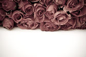 Romantic vintage rose background — Stock Photo