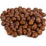 Chestnut on white background — Stock Photo