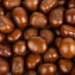 Chestnut background — Zdjęcie stockowe