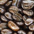 Close up of coffee beans on white background with copy space. — Zdjęcie stockowe