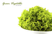 Green salad vegetable on white background with copy space — Stock Photo