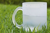 Water glass on grass closeup background — Stock Photo