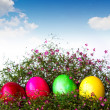 Colorful easter eggs on grass and flower — Stok fotoğraf