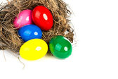 Colorful Easter eggs in a nest from branches on white backgroun — Stock Photo