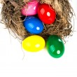 Colorful Easter eggs in a nest from branches on white backgroun — Stock Photo #21760003
