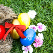 Easter eggs in nest on green grass — Stock Photo #22135169