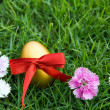 Easter eggs on green grass with flower — Foto de Stock