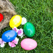 Easter eggs in nest on green grass — Stock Photo