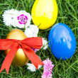 Easter eggs on green grass with flower - Stock Photo
