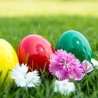 Easter eggs on green grass with flower — Zdjęcie stockowe