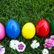 Easter eggs on green grass with flower — Stock Photo