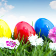 Easter eggs on green grass over white background — Stock Photo