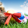 Easter eggs on green grass over white background — Foto Stock